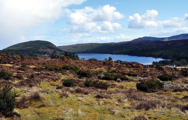 The archaeology of Loch Migdale